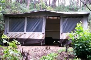 Pronájem karavanu na Orlické přehradě