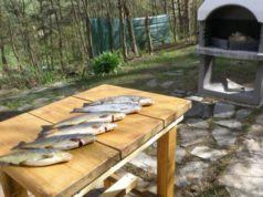 Pronájem chaty u řeky Jihlavy - JM Hrubšice u Ivančic